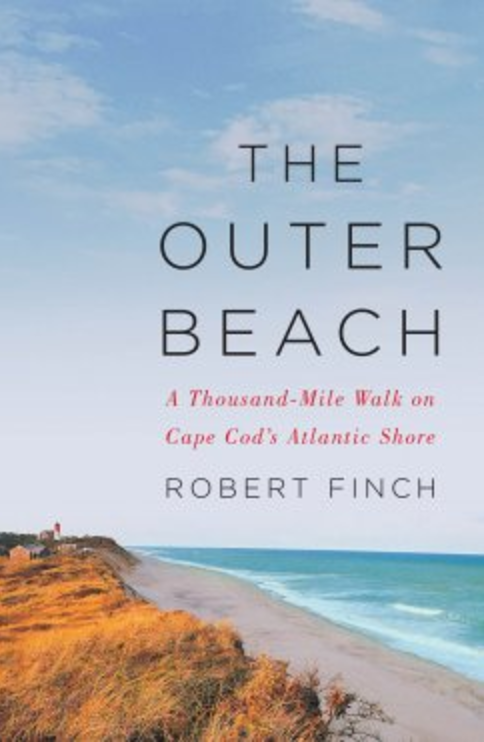The Outer Beach by Robert Finch