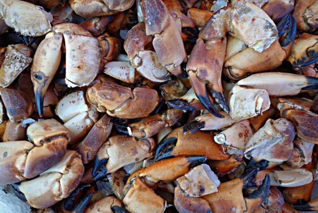 a Cape Cod diet